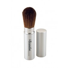 Retractable Powder Brush Silver